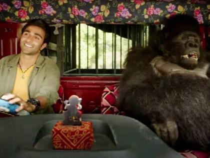 Hello Charlie Teaser: Aadar Jain's road adventure with gorilla looks promising | Hello Charlie Teaser: Aadar Jain's road adventure with gorilla looks promising