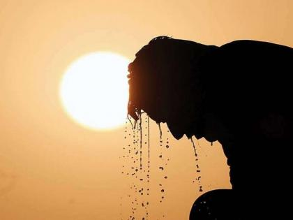 Heat Wave: Heat wave hits entire Konkan; Temperatures rises to 39 in most parts of state | Heat Wave: Heat wave hits entire Konkan; Temperatures rises to 39 in most parts of state