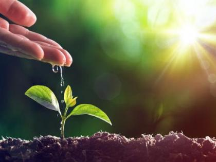 World Environment Day 2020: Theme, Importance, and Significance   World Environment Day 2020: Theme, Importance, and Significance