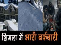 शिमला में भारी बर्फबारी, सैलानियों ने जमकर की मस्ती