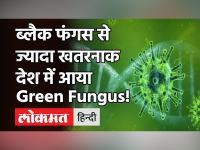 Coronavirus: Indore में मिला Green Fungus का पहला मरीज, ब्लैक और व्हाइट फंगस से है ज्यादा खतरनाक