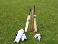 टी10 मैच में तूफान, महज इतनी गेंदों में सलामी बल्लेबाज ने ठोका अर्धशतक, पारी में जड़ी 9 बाउंड्री