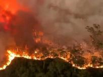 दावोस में उठी आवाज, जल रही है दुनिया, बचाना सिर्फ फायर ब्रिगेड का दायित्व नहीं