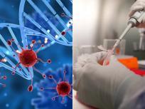 Coronavirus Outbreak Updates: दुनिया में कोरोना कहर, मरने वाले की संख्या 35,000 के पार, 183 देशोंमें पॉजिटिव केस738,389