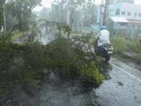 पश्चिम बंगाल में अम्फान चक्रवात, प्रभावित इलाकों में बिजली-पानी की आपूर्ति को लेकर विरोध प्रदर्शन जारी