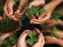 World Environment Day 2020: विश्व पर्यावरण दिवस आज, जानिए क्या है इस बार की थीम और इसका महत्व