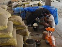 केवल 2.14 करोड़ प्रवासियों तक पहुंचता है मुफ्त अनाज, गोवा और तेलंगाना में कोई लाभार्थी नहीं