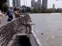 मुंबई पुलिस ने जान पर खेल कर बचाई समुद्र में डूबते एक शख्स की जान, वीडियो हो गया वायरल