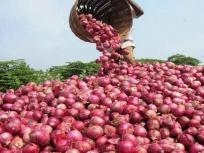 महाराष्ट्र के किसान को प्याज बेचने से हुई छह रुपए की कमाई, मुख्यमंत्री को भेजा मनी ऑर्डर