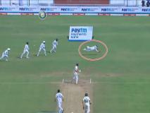 IND vs SA: धोनी के अंदाज में ऋद्धिमान साहा ने लपका 'सुपरमैन कैच', कोहली भी रह गए दंग, देखें VIDEO
