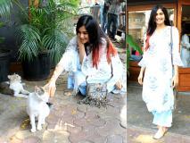 Pics: मुंबई में बिल्ली के साथ मस्ती करती नजर आईं बॉलीवुड एक्ट्रेस