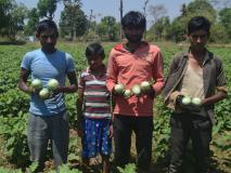 पिता ने 1 किलो चावल देकर किया अलग, सब्जी की खेती से 6 भाइयों ने सुधारी जिंदगी