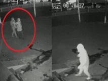 ऐसे चोर हो तो पुलिस वालों के मजे ही मजे, वायरल वीडियो देख नहीं रोक पाएंगे अपनी हंसी