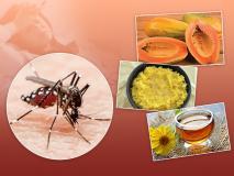 Monsoon Health Tips: डेंगू, मलेरिया, चिकनगुनिया में खाएं ये 9 चीजें, बुखार, कम प्लेटलेट्स, कमजोरी से मिलेगी राहत