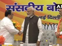 जे पी नड्डा भाजपा के कार्यकारी अध्यक्ष होंगे, भाजपा संसदीय बोर्ड की बैठक में हुआ फैसला