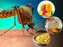 सावधान! शरीर में खून की कमी होने पर डेंगू का ज्यादा खतरा, तेजी से खून बनाती हैं ये 8 चीजें