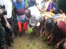जब खेत में धान रोपने पहुंचे यहां के मुख्यमंत्री, किसान भी देख हुए हैरान, वीडियो वायरल