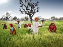 नरेंद्र मोदी सरकार ने उर्वरक सब्सिडी सीधे किसानों के बैंक खातों में डालने के लिए शुरू की पहल