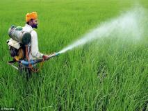 भरत झुनझुनवाला का ब्लॉग: नई कृषि नीति का निर्माण हो