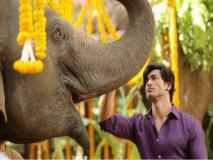 विद्युत जामवाल की फिल्म 'जंगली' की रिलीज डेट हुई चेंज, अप्रैल नहीं मार्च की इस तारीख को पर्दे पर होगी रिलीज