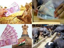 Budget 2019: दो हेक्टेयर से कम ज़मीन वाले किसानों को मोदी सरकार ने दिया ये तोहफा