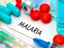 खुशखबरी! मलेरिया से अब नहीं होगी कोई मौत, इस देश में शुरू हुआ मलेरिया का पहला टीका, जानें कब आएगा भारत