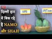 वीडियो: दिल्ली के Mango Festival में 500 से ज्यादा रसीले आमों का मेला, आप कैसे खाएंगे