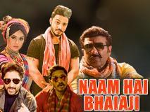 Bhaiaji Superhit Song Naam Hai Bhaiaji Out: एक्शन अंदाज में दिखे सनी देओल, अरशद वारसी और श्रेयस तलपड़े ने किया जमकर डांस