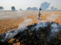 डीजल जेनरेटर,ईंट के भट्टे,स्टोन क्रशर,प्लास्टिक को खुले में जलाने के कारण दिल्ली, यूपी मेंहवा खराब