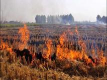 पराली जलाने पर पूर्ण प्रतिबंधः मथुरा में 11 किसान को भेजा जेल,300 को नोटिस, 13 लाख का जुर्माना