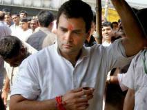 जन्मदिन पर उड़ी राहुल गांधी की खिल्ली, ट्रॉल ने कहा- आपसे पहले मैं खुद को सबसे बेवकूफ समझता था
