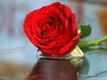 गुलाब जल के 5 आसान प्रयोग जो हफ्ते में दिलाएं गोरी, निखरी, बेदाग त्वचा