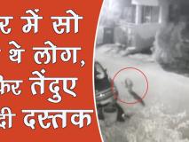 वीडियो: घर में सो रहे थे लोग तभी तेंदुए ने दी दस्तक