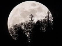 Super Snow Moon : आज रात सबसे ज्यादा चमकीला, खूबसूरत दिखेगा चंद्रमा, नहीं देखा तो 7 साल करना होगा इंतजार