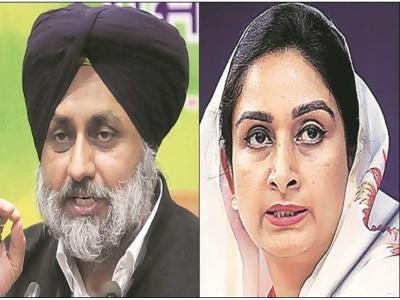 SAD अध्यक्ष सुखबीर सिंह बादल फिरोजपुर से लड़ेंगे चुनाव, हरसिमरत कौर बठिंडा से मैदान में