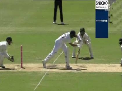 India vs Australia, 3rd Test: Tim Paine loses cool after Cheteshwar Pujara unsuccessful review   IND vs AUS, 3rd Test: अजिंक्य रहाणे को दिया नॉटआउट, मैदानी अंपायर से भिड़ गए ऑस्ट्रेलियाई कप्तान टिम पेन