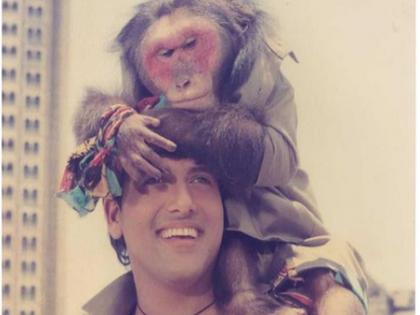 film Aankhen monkey was very expensive used to drink alcohol in the evening govinda revealed in kapil sharma show | काफी खर्चीला था 'आंखें' फिल्म का बंदर, शाम होते ही पीने लगता था शराब; गोविंदा ने किया खुलासा