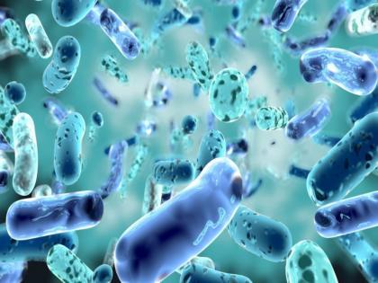DBT unveils country's first 'One Health' consortium | One Health' consortium: सरकार ने बैक्टीरिया, वायरल संक्रमण की निगरानी के लिए वन हेल्थ कार्यक्रम शुरू किया