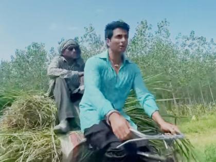 Sonu Sood was seen carrying animal feed on the handcart with buffalo owner sat down actor asked for milk in discount   भैंस मालिक को बैठा, ठेले पर घास ढोते दिखे सोनू सूद, डिस्काउंट में मांगा दूध तो मिला ये जवाब
