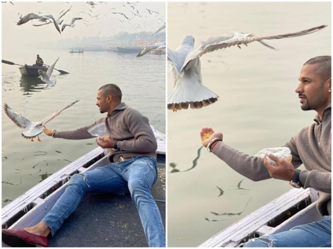 Shikhar Dhawan spotted feeding cute birds, violating bird flu guidlines in varanasi | शिखर धवन पर हो सकती है कार्रवाई, भारी पड़ा परिंदों को दाना खिलाना