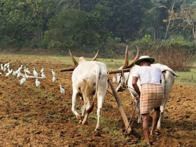 N. K. Singh's blog: Economic development is possible only through agriculture | एन. के. सिंह का ब्लॉग: आर्थिक विकास केवल कृषि से ही संभव