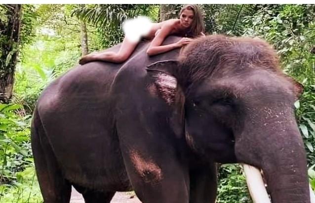 Russia's Instagram influencer poses nude on elephant, know what she said after criticism | रूस की इंस्टाग्राम इन्फ्लुएंसर ने हाथी पर लेटकर दिया नग्न पोज, जानें आलोचना के बाद सफाई में क्या कहा