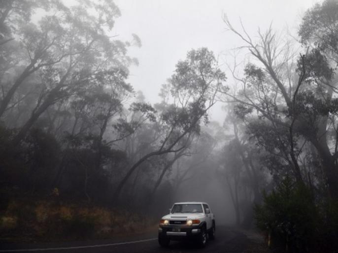 28 people lost their lives due to heavy rain in Australia due to heavy rain in Australia   ऑस्ट्रेलिया में भारी बारिश से जंगलों में लगी भीषण आग से मिली राहत, 28 लोगों की हो चुकी है मौत