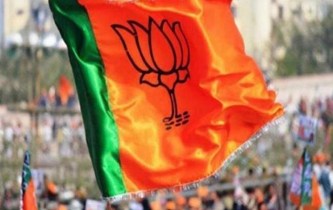 BJP's membership campaign flourished in Uttar Pradesh, 54 lakh new members created in the state | उत्तर प्रदेश में खूब फला-फूला भाजपा का सदस्यता अभियान, प्रदेश में बनाये 54 लाख नए सदस्य