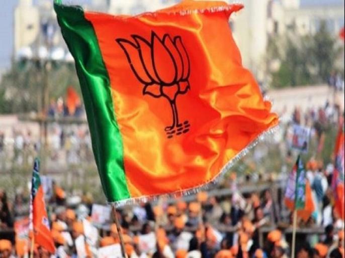 Lok sabha election 2019: BJP's former minister devi singh bhati resign, effect in election | लोकसभा चुनाव 2019: बीजेपी के पूर्व मंत्री देवी सिंह भाटी का इस्तीफा पार्टी को भारी पड़ेगा?