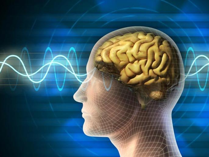IISc study shows how brain region is involved in paying attention | ध्यान देने में दिमाग का यह खास हिस्सा है जिम्मेदार