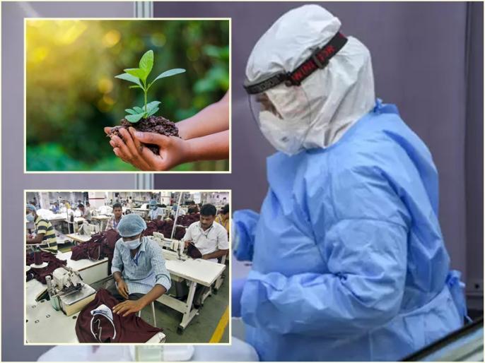 India can recover from Corona crisis, these measures will help | कोरोना संकट से उबर सकता है भारत, पर्यावरण-प्रोडक्शन समेत इन उपायों से मिलेगी मदद
