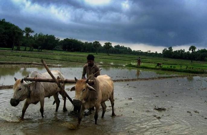 Monsoon to be delayed by five days; to hit Kerala on June 6: IMD | पांच दिन की देरी,छह जून को केरल को भिगोएगा मानसून, दिल्ली-एनसीआर में 29 जून को