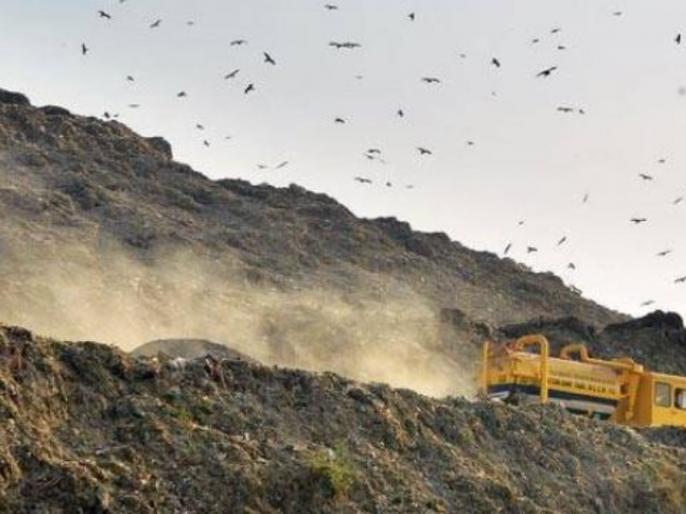 delhi air quality very poor, Environment minister says hussain zero tolerance for garbage, crop residue burning   दिल्ली में बढ़ रहा वायु प्रदूषण, पर्यावरण मंत्री ने कहा- पराली जलाना बर्दाश्त नहीं, इन नियमों का हो पालन