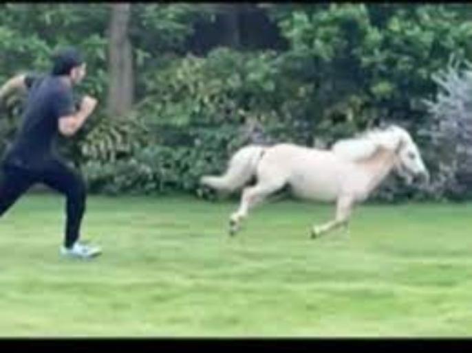 ms dhoni takes part in a race against his horse sakshi shares adorable video on instagram   महेंद्र सिंह धोनी ने लगाई अपने घोड़े के साथ रेस, पत्नी साक्षी ने शेयर किया वीडियो